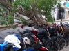 Trees collapsed on motos.